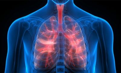 Bleach increase the risk of lung diseases