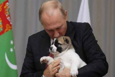 Putin pleasant on getting a dog gift from Turkmenistan president