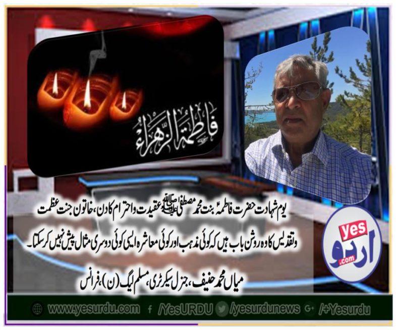 Mian Muhammad Hanif, gen secretary, pmln, france