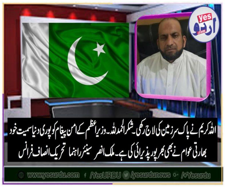malik ansar khan, senior, leader, PTI, France