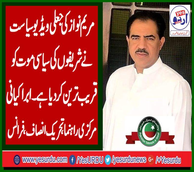 abrar kayani, senior, leader, pti, france, says, maryam nawaz's, fake, video, politics, digging, grave, for, sharif's