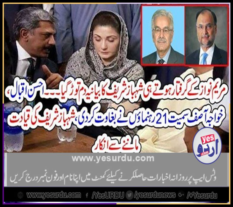 on, arrest, of,maryam, people, of, pmln, rejected, shehbaz sharief, as, custodian, of, pmln