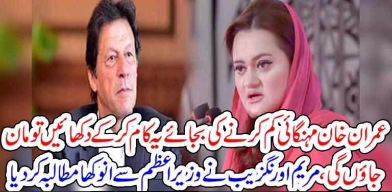 PMLN, Leader, Maryam Aurangzeb, challenged, Prime Minister, Imran Khan, for, new, task, she, claims, she, will, accept, Imrn Khan, Only, if, he, can, do, this