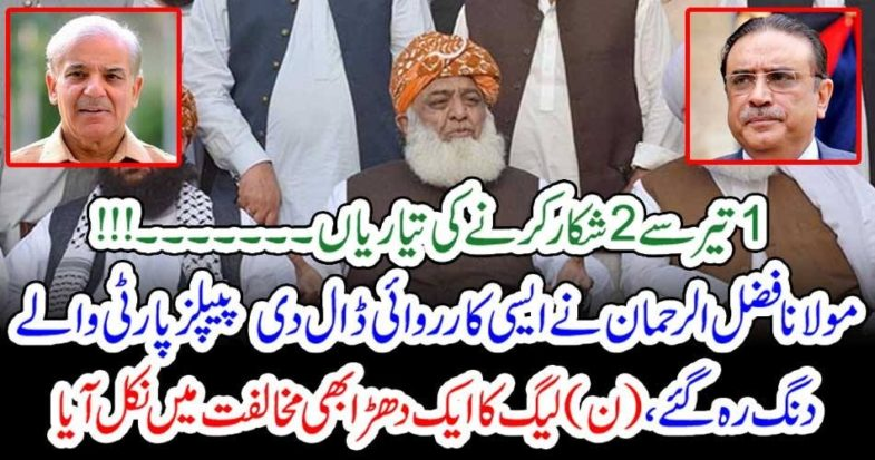 Molana Fazal ur Rahman, is, going, to, hunt, two, with, one, arrow, he, will, meet, Nawaz Shareif, in, Hospital, and, then, will, start, real, protest, from, Lahore