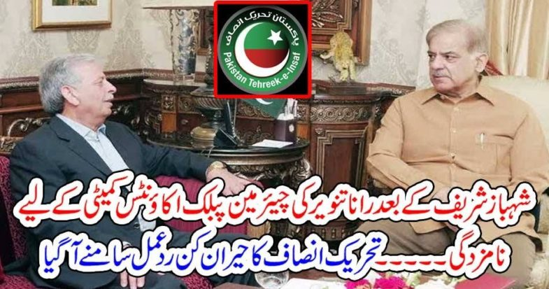 Rana Tanveer, nominated, as, chairman, public, accounts, committee, in, place, of, Shehbaz shareif, PTI, Reaction, strange