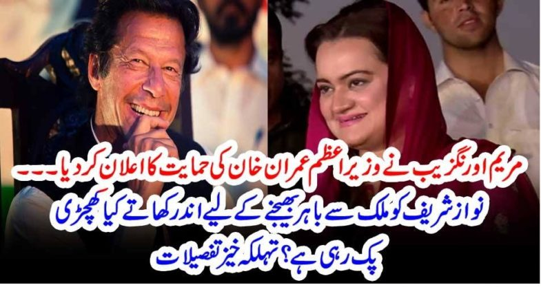 Maryam Aurangzeb, statement, in, favor, of, Imran Khan, what, is, committment, to, sent, Mian Nawaz shareif, out, of, country