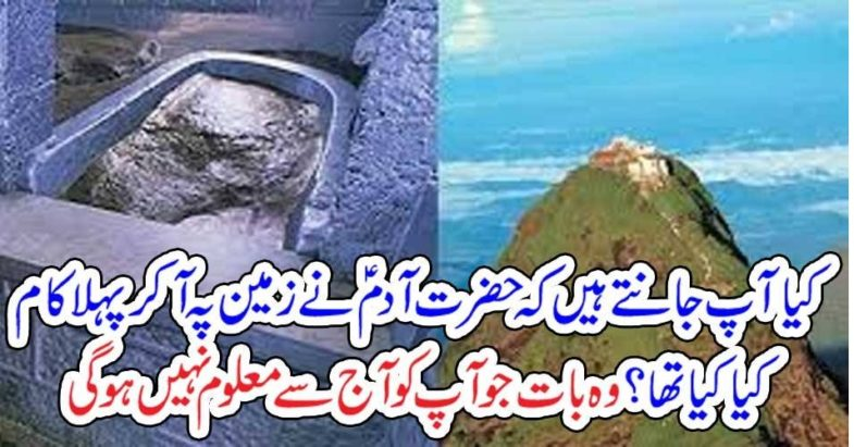 What, does, Hazrat Adam,A.S,do, when, he, arrived, on, the, earth, interesting, facts