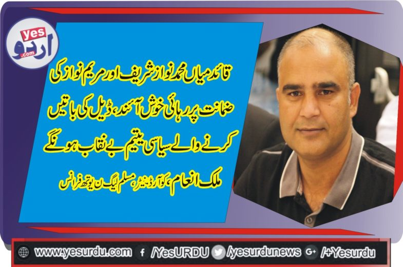 MALIK INAM, COORDINATOR, PMLN, YOUTH, WING, FRANCE, CONDEMNED, GOVERNMENT, EFFORTS