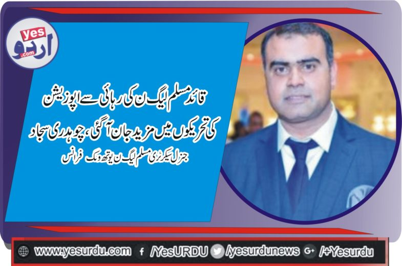 CHAUDHRY SAJJAD AHMED, GEN SECRETARY, PMLN, YOUTH WING , FRANCE, EXPRESS, HIS, ANGER AT, PTI, GOVERNMENT