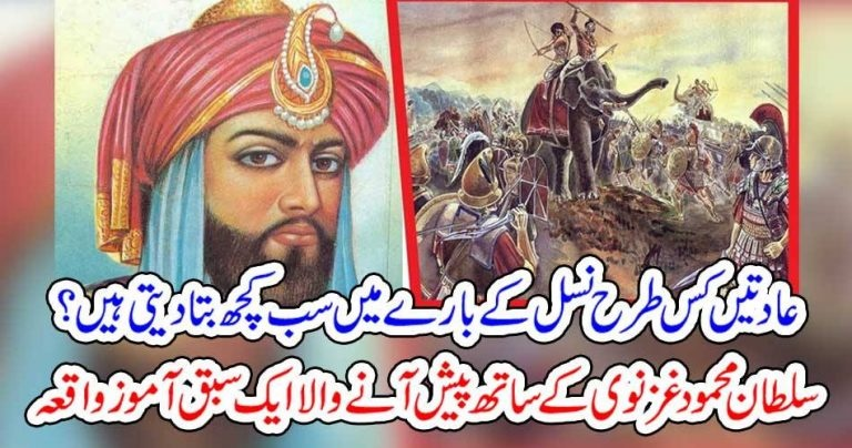 SULTAN MEHMOD GHAZNAVI, HAPPENS, A, NATURAL, INCIDENT, WHICH, MATTERS, A, LOT, WITH, HUMAN, NATURE