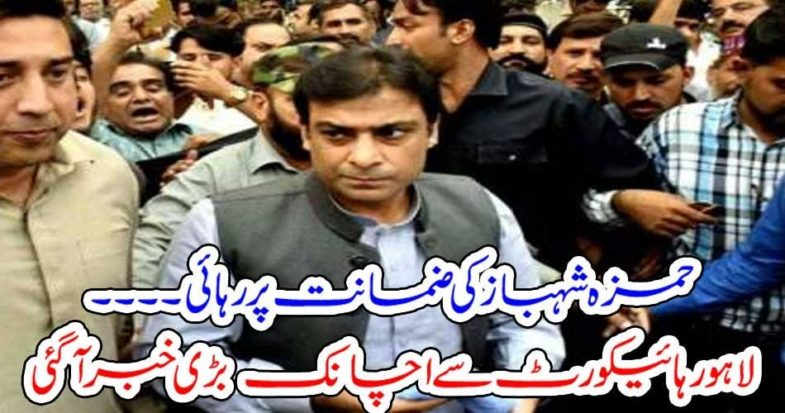 HAMZA SHEHBAZ, GOT, FREE, FROM, NAB, CUSTODY
